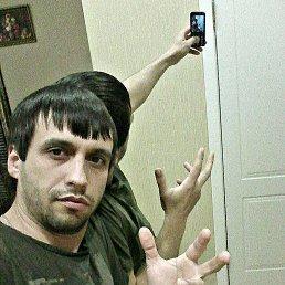 Александр, 34 года, Армавир