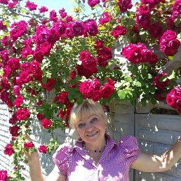 Антонина, 63 года, Дружковка