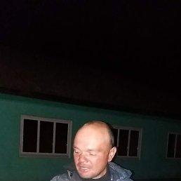 Владимир, 39 лет, Козелец