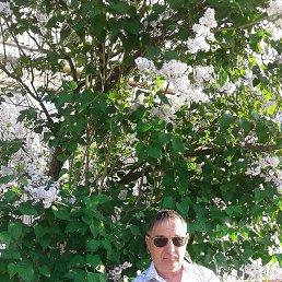 Сергей, 55 лет, Баштанка