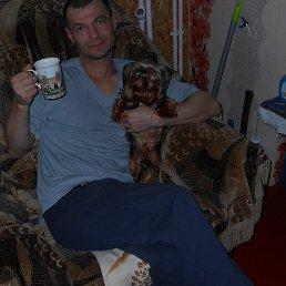 александр, 35 лет, Добринка