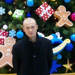 Александр, 39 лет, Иваново