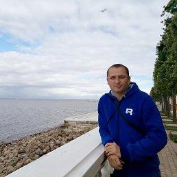 Алексей, 29 лет, Грайворон
