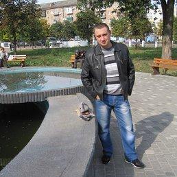 Илья, 29 лет, Шостка