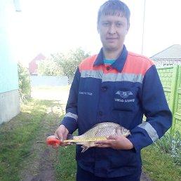 Саша, 30 лет, Любомль