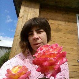 Александра, 28 лет, Пестово