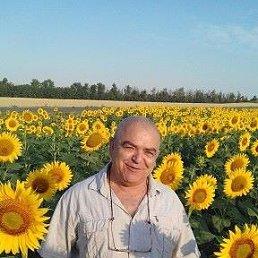 МИХАИЛ, 65 лет, Чалтырь