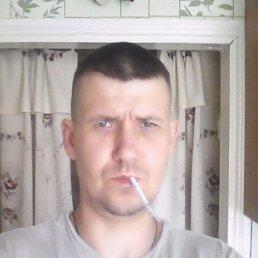 Gregor, 39 лет, Носовка