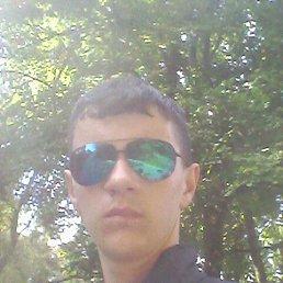 Андрій, 20 лет, Теребовля