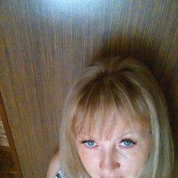 Вера, 41 год, Дмитриев-Льговский