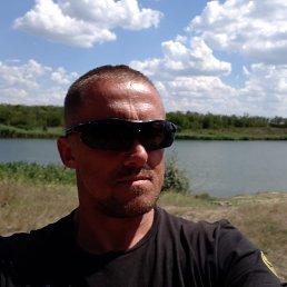 Сергей, 39 лет, Гуляйполе