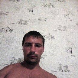 Илья, 30 лет, Губкин