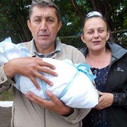 Alexander Sivirin, 55 лет, Оленегорск