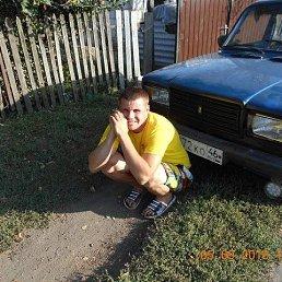 maksim, 31 год, Касторное