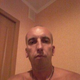 Виктор, 39 лет, Иваново