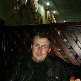 Виктор, 27 лет, Новоград-Волынский