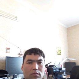 Эмиль, 41 год, Кокошкино