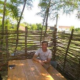 Сергей, 41 год, Пологи