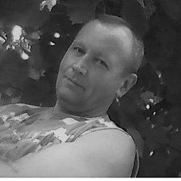 Александр, 46 лет, Дзержинск
