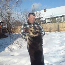 Сергей, 55 лет, Красноармейск