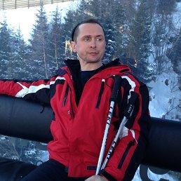 Алексей, 47 лет, Воровского