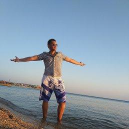 Николай, 27 лет, Брест