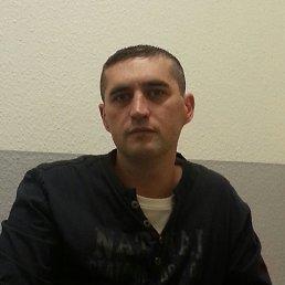 Андрей, 37 лет, Бонн