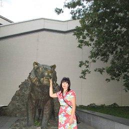 Светлана, 43 года, Владивосток