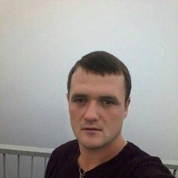 Вася, 27 лет, Городенка