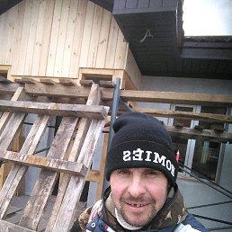 Николай, 35 лет, Томск