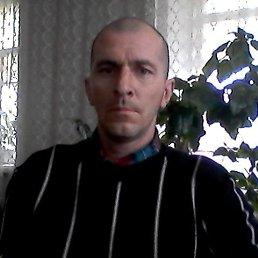 Николай, 36 лет, Петровское