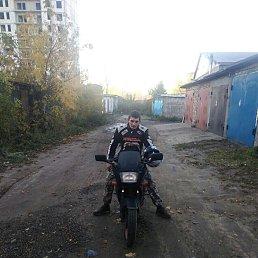 Мишаня, 30 лет, Монино