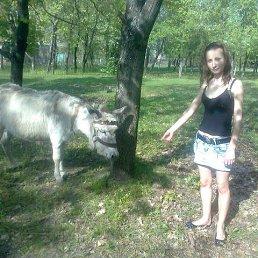 Анжелика, 26 лет, Мариуполь