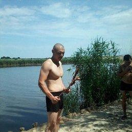 Андрей, 30 лет, Кривой Рог