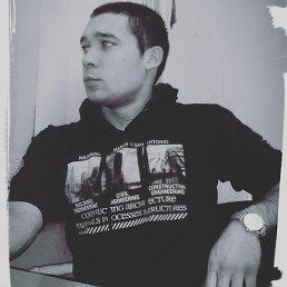 Николай, 27 лет, Шаховская