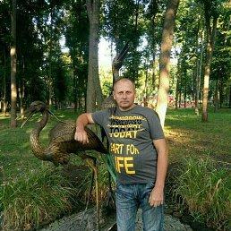 Сергей, 46 лет, Волчанск