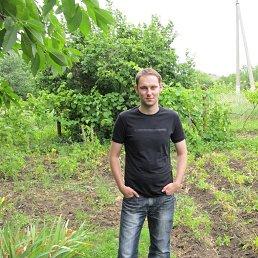 Андрей, 34 года, Армавир