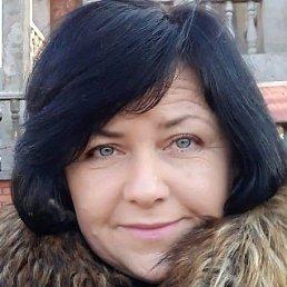 Светлана, 50 лет, Староконстантинов