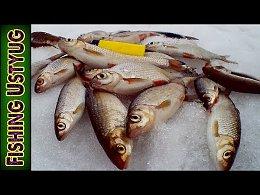 Рыбалка в МАРТЕ на БЕЛУЮ рыбу.ЛОВЛЯ Плотвы у БЕРЕГА весной 2019