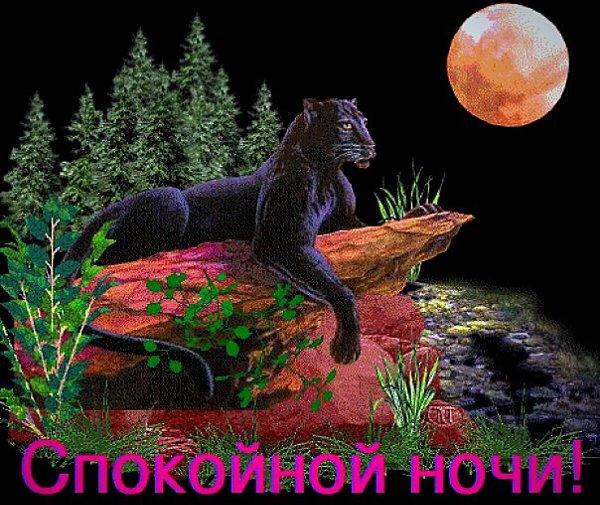 Анимация, открытки с пантерой удачи
