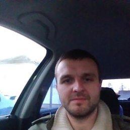 Иван, 29 лет, Псков
