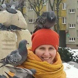 ИННА, 41 год, Смела