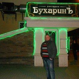 Владимир, 34 года, Калининград