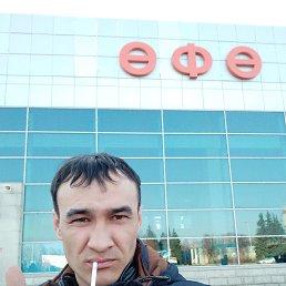 Фото Дамир, Омск, 32 года - добавлено 1 мая 2019