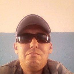 Евгений, 39 лет, Калачинск