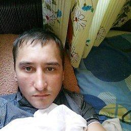Роман, 29 лет, Пугачев