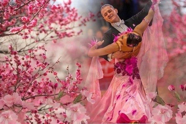 Цветы заказ танцев