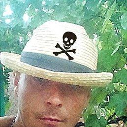 ALEX, 35 лет, Пологи