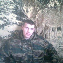 Александр, 27 лет, Кшенский