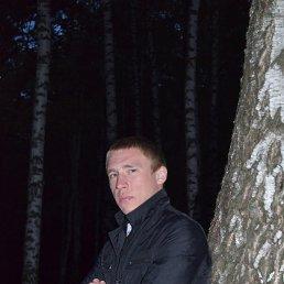Сергей, 29 лет, Тула